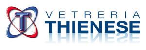 VETRERIA THIENESE Logo